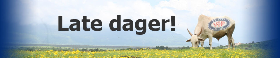 latedager